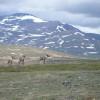 Nationalparks im Westen Kanadas