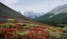 Wandererlebnis Westkanada